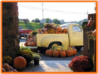 pumpkin-truck-small-web-view.jpg